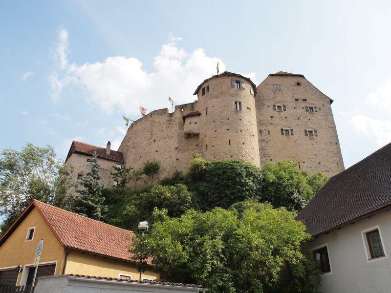 Wolfsegg Burg