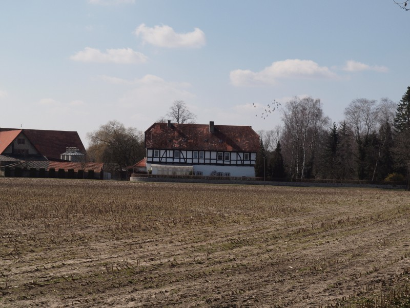 Gut Dedinghausen